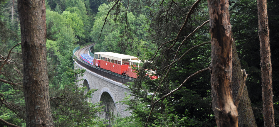 Viaduc train en vélorail du Velay
